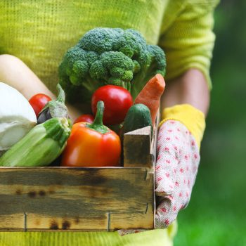 Feb 28 is National CSA Day–are you in?